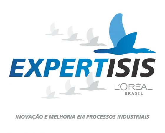Expertisis